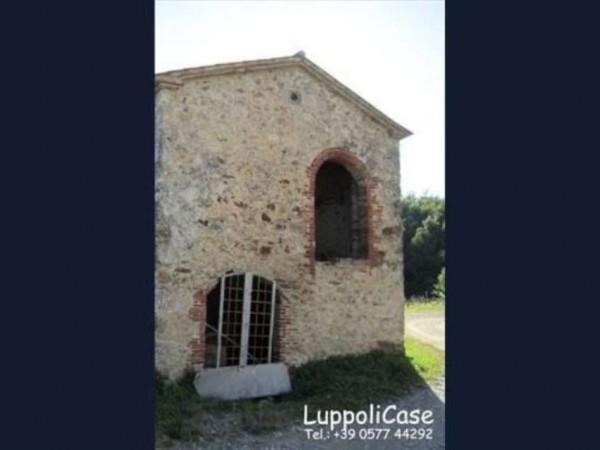Villa in vendita a Montieri, Con giardino, 300 mq - Foto 8
