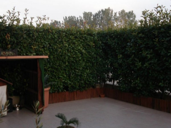 Villa in vendita a Quintano, Residenziale, Con giardino, 164 mq - Foto 4