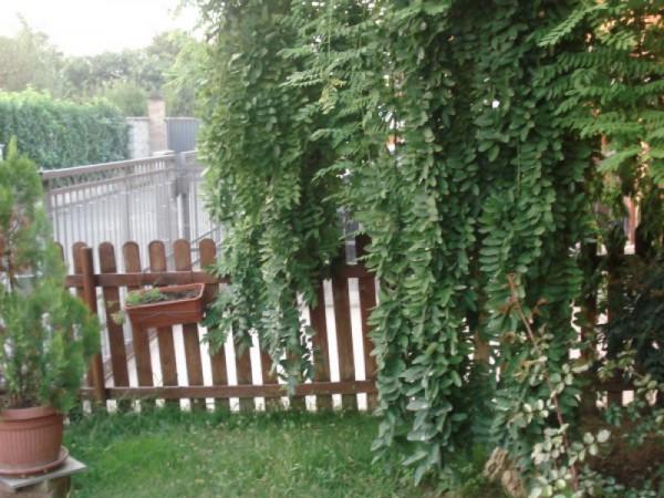 Villa in vendita a Quintano, Residenziale, Con giardino, 164 mq - Foto 6