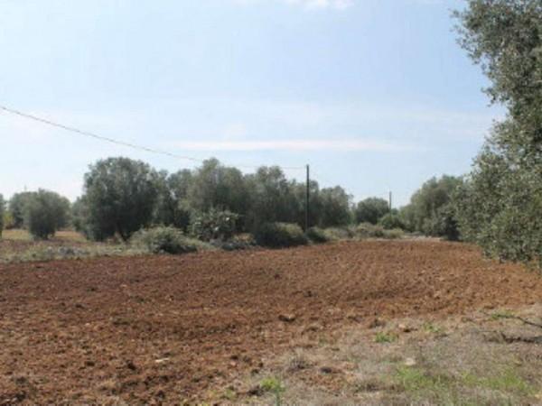 Villa in vendita a Muro Leccese, Con giardino, 160 mq - Foto 6