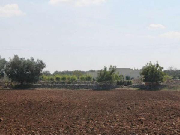 Villa in vendita a Muro Leccese, Con giardino, 160 mq - Foto 4