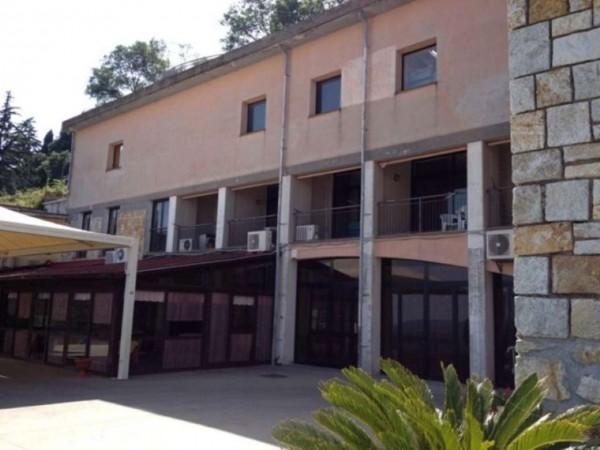 Immobile in vendita a Tolfa, Tolfa, 450 mq - Foto 2
