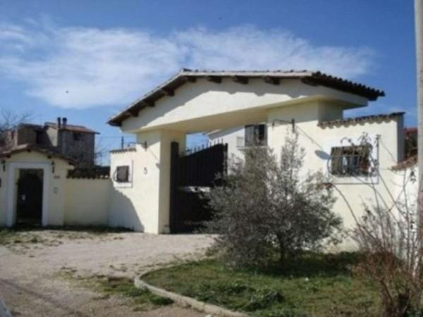Villa in vendita a Roma, Osteria Nuova, Con giardino, 450 mq - Foto 7