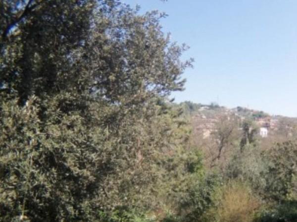 Villa in vendita a Perugia, San Marco, Con giardino, 450 mq - Foto 3