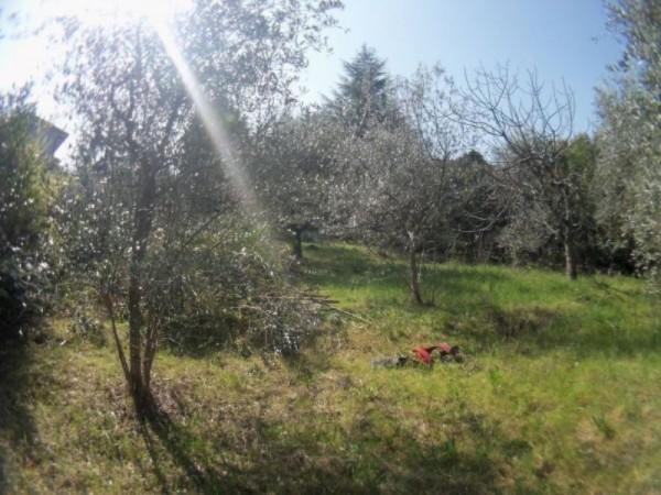 Villa in vendita a Perugia, San Marco, Con giardino, 450 mq - Foto 5