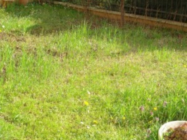 Appartamento in vendita a Cesate, Arredato, con giardino, 58 mq - Foto 21