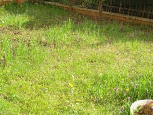 Appartamento in vendita a Cesate, Centro, Arredato, con giardino, 63 mq - Foto 12
