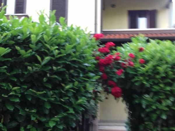 Villa in vendita a Garbagnate Milanese, Con giardino, 185 mq - Foto 24