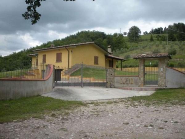 Villa in vendita a Città di Castello, Con giardino, 500 mq - Foto 9