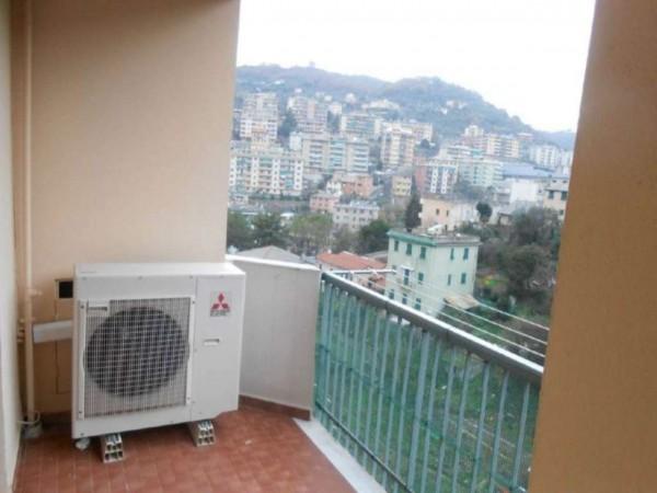 Appartamento in affitto a Genova, Marassi, Con giardino, 115 mq - Foto 28