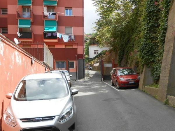Locale Commerciale  in vendita a Genova, Alture, 435 mq - Foto 8
