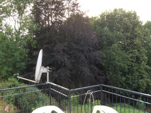 Villa in vendita a Pellio Intelvi, 300 mq - Foto 13