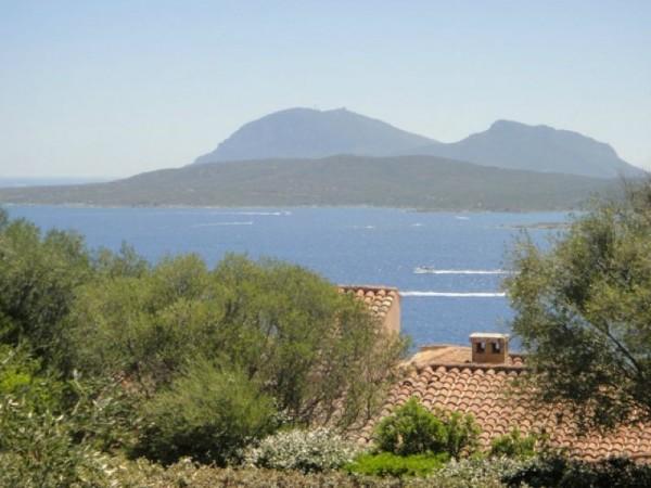 Villa in vendita a Olbia, Punta Lada(porto Rotondo), 250 mq - Foto 3