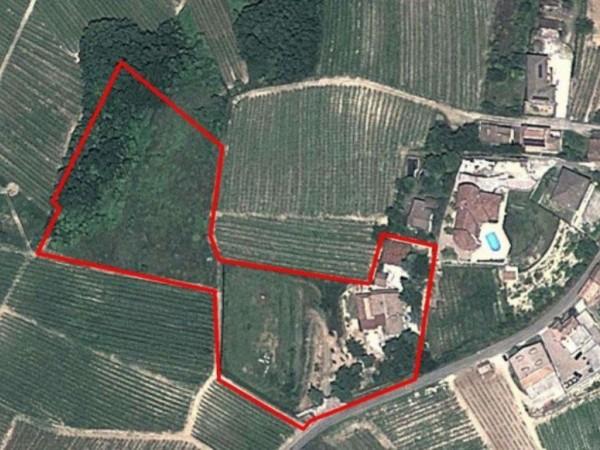 Villa in vendita a Pietra de' Giorgi, 600 mq - Foto 9