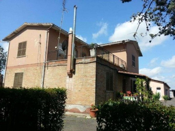 Locale Commerciale  in vendita a Montelibretti, Monterotondo, 220000 mq - Foto 4