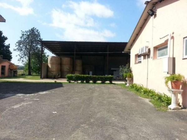 Locale Commerciale  in vendita a Montelibretti, Monterotondo, 220000 mq - Foto 28