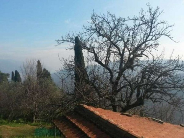 Rustico/Casale in vendita a Rapallo, San Martino Di Noceto, Con giardino, 120 mq - Foto 11