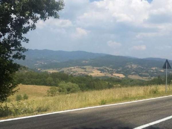 Casa indipendente in vendita a Pratovecchio Stia, Collina Tartiglia, Con giardino, 650 mq - Foto 25