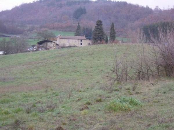 Casa indipendente in vendita a Pratovecchio Stia, Collina Tartiglia, Con giardino, 650 mq - Foto 14