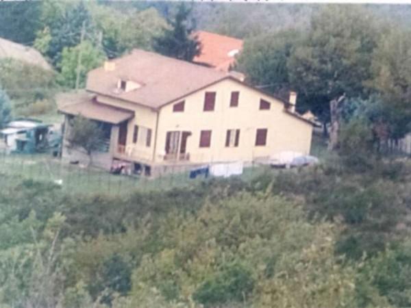 Casa indipendente in vendita a Pratovecchio Stia, Vallolmo, Con giardino, 280 mq - Foto 8