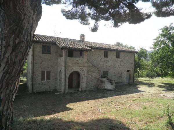 Rustico/Casale in vendita a Bettona, Con giardino, 260 mq