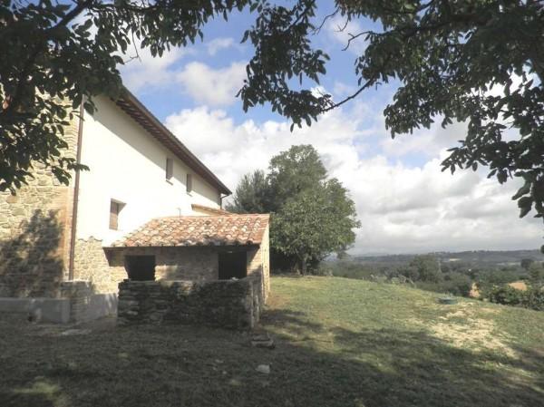 Rustico/Casale in vendita a Bettona, Con giardino, 260 mq - Foto 6