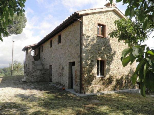Rustico/Casale in vendita a Bettona, Con giardino, 260 mq - Foto 5