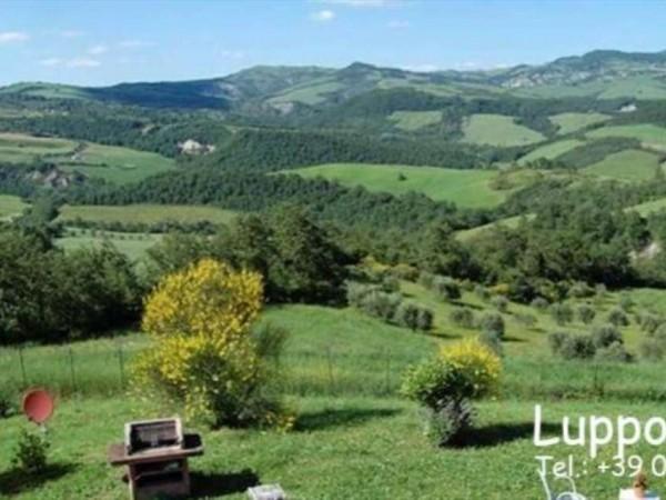 Villa in vendita a San Casciano dei Bagni, Arredato, con giardino, 325 mq - Foto 14