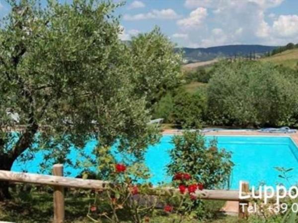 Villa in vendita a San Casciano dei Bagni, Arredato, con giardino, 325 mq - Foto 28