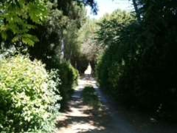 Appartamento in vendita a Perugia, Con giardino, 170 mq - Foto 14