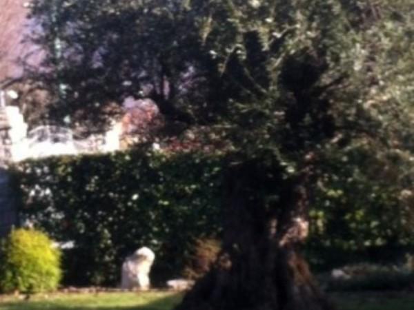 Rustico/Casale in vendita a Collebeato, 300 mq - Foto 1