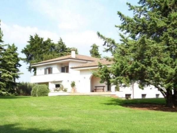 Villa in vendita a Pomezia, Con giardino, 500 mq - Foto 3