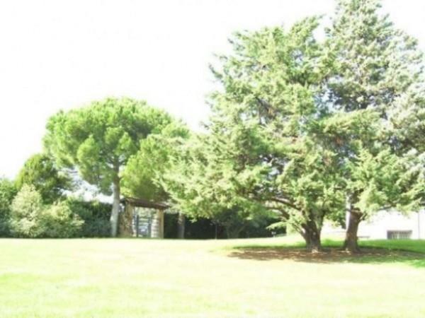 Villa in vendita a Pomezia, Con giardino, 500 mq - Foto 7