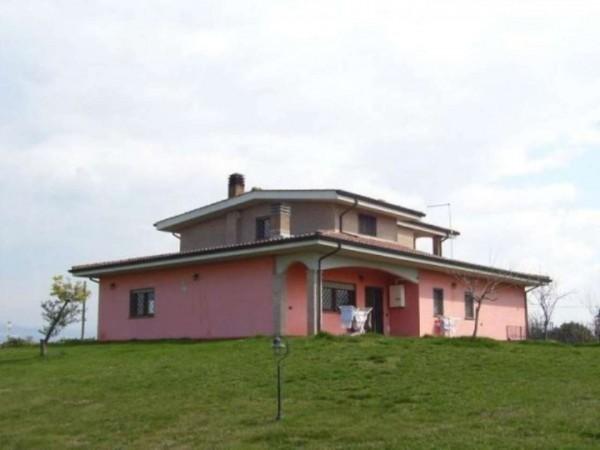 Villa in vendita a Pomezia, Con giardino, 400 mq - Foto 3
