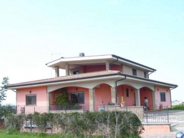 Villa in vendita a Pomezia, Con giardino, 400 mq