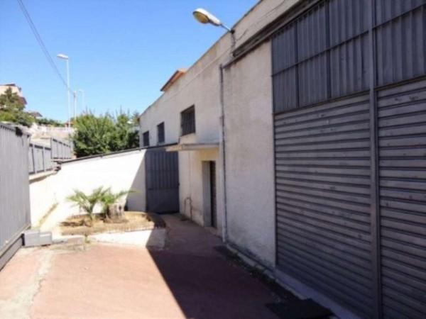 Capannone in vendita a Pomezia, 480 mq - Foto 15