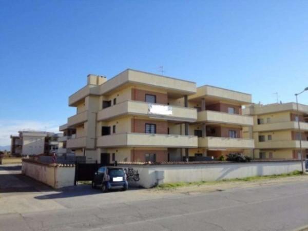 Appartamento in vendita a Ardea, Marina Di Ardea, Con giardino, 50 mq - Foto 2