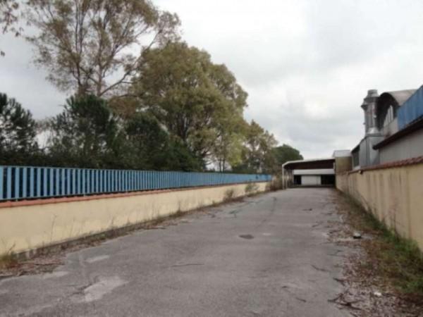 Capannone in vendita a Latina, Borgo Piave, Con giardino, 665 mq - Foto 3