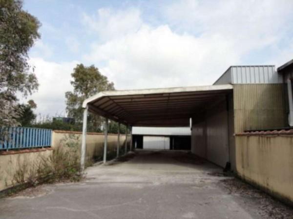 Capannone in vendita a Latina, Borgo Piave, Con giardino, 665 mq - Foto 2