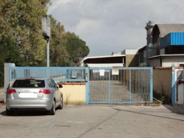 Capannone in vendita a Latina, Borgo Piave, Con giardino, 665 mq - Foto 4