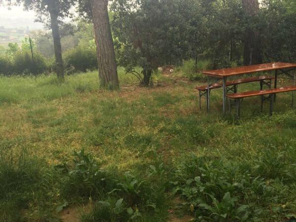 Appartamento in affitto a Perugia, Civitella D'arna, Con giardino, 80 mq - Foto 10