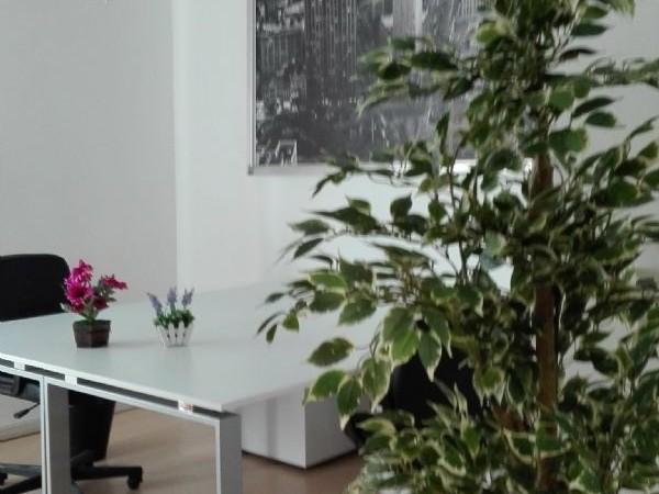 Ufficio in affitto a Milano, Loreto - Foto 12