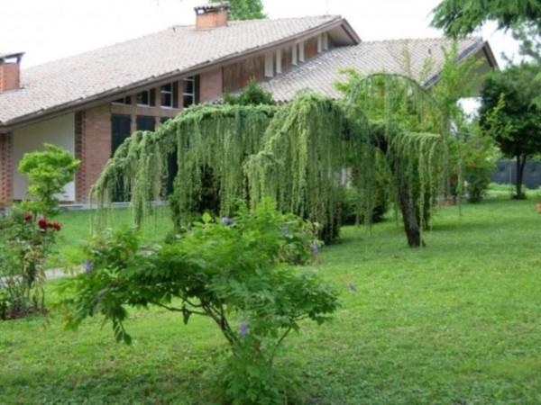 Villa in vendita a Cadoneghe, Con giardino, 320 mq - Foto 17