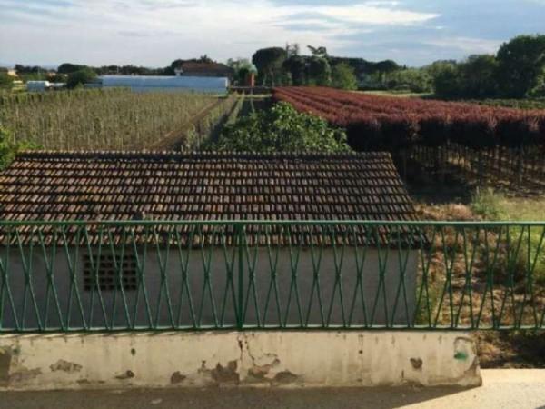 Rustico/Casale in affitto a Perugia, Balanzano, Con giardino, 90 mq - Foto 32