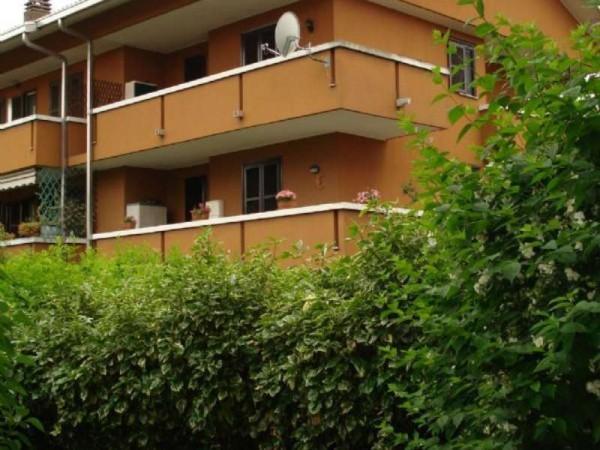 Appartamento in affitto a Cesate, Con giardino, 180 mq - Foto 1