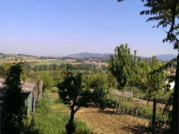 Villa in vendita a Perugia, San Martino In Colle, Con giardino, 380 mq - Foto 1