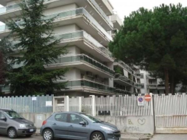 Appartamento in vendita a Caserta, Petrarelle, 150 mq - Foto 1