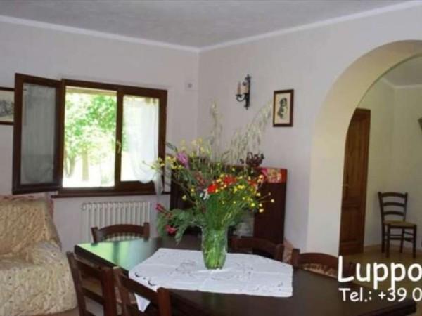 Villa in vendita a Pienza, Con giardino, 200 mq - Foto 12