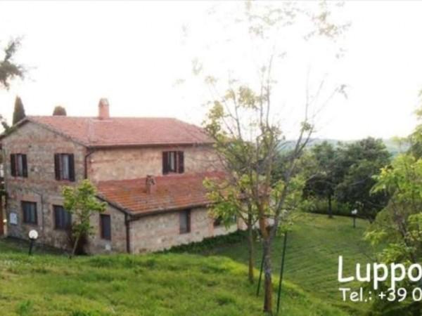 Villa in vendita a Pienza, Con giardino, 200 mq - Foto 16