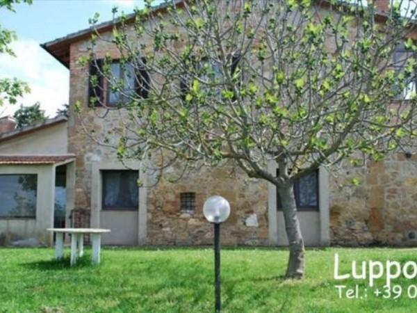 Villa in vendita a Pienza, Con giardino, 200 mq - Foto 14